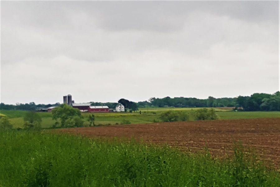 NJ Sod Farms