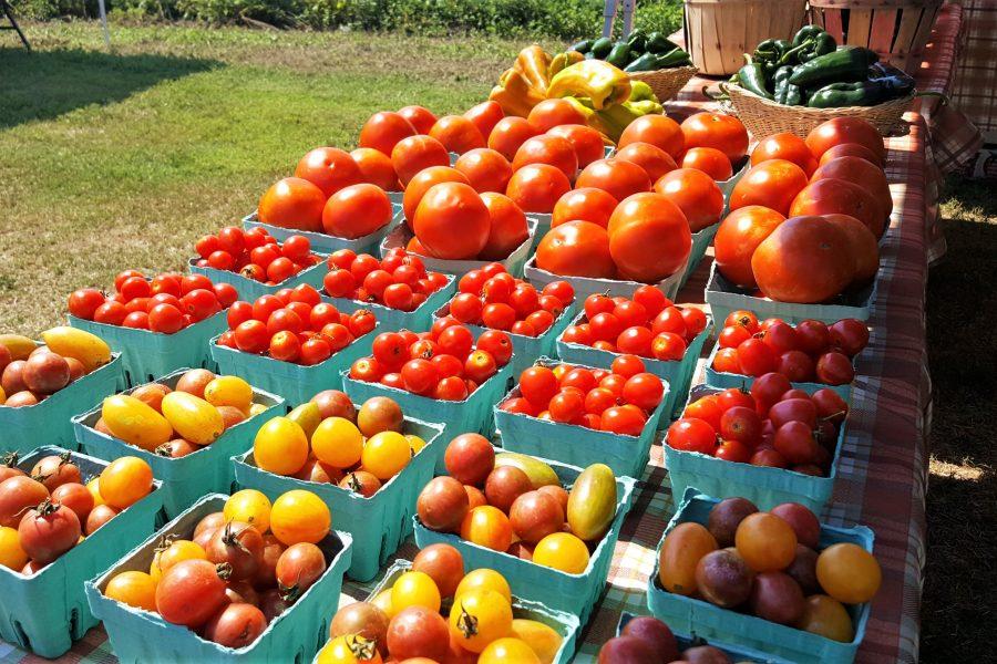 Jersey fresh Farmers Market finds
