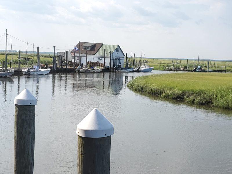 Oyster Creek Restaurant dock view