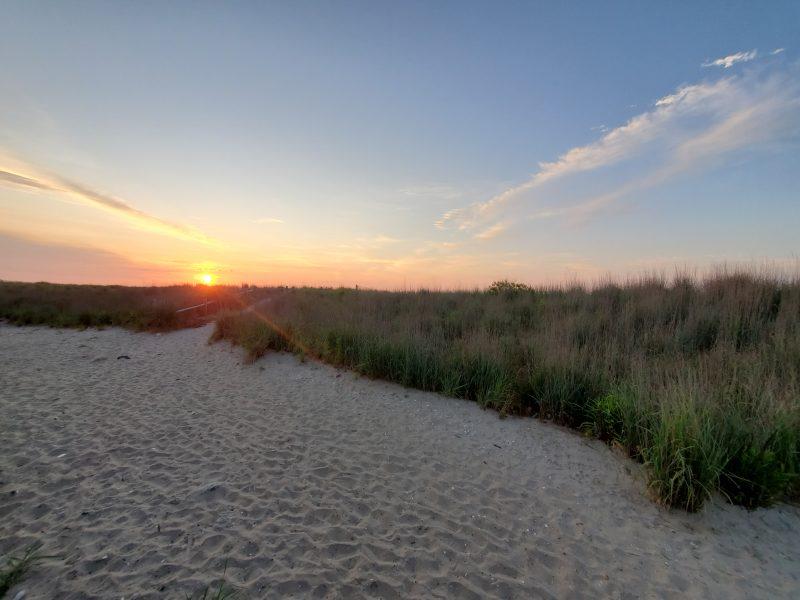 AC Sunrise